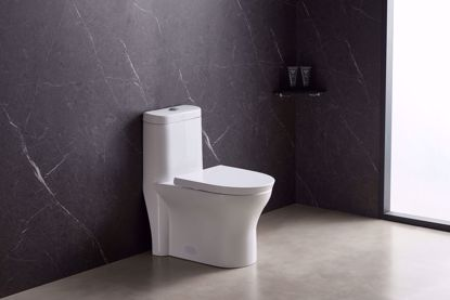 Picture of 1.6 GPF Round One-Piece toilet (Seat Included)